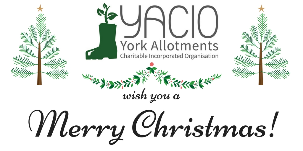 York Allotments YACIO Merry Christmas